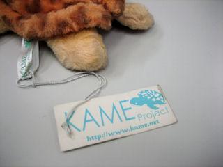 KAME2